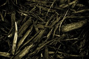 Wood Chips 2 by Hjoranna
