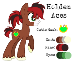 MLP:Holden Aces Profile by kiananuva12