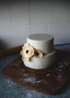 Rustic Wedding Cake by alexisfyre