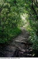 Ravine Path - Summer 2 by Stickfishies-Stock