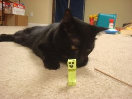 Mini Creeper by MasonAndAGhast