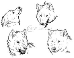 Wolf Heads 08 by chenneoue