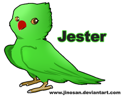 Jester The RingNeck by JinoSan
