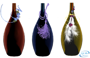Decorative bottles - PNG by lifeblue