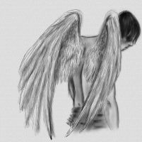 Angel by kafryne