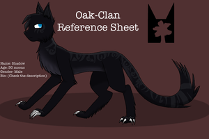 Shadow Reference Sheet by silverwing2254
