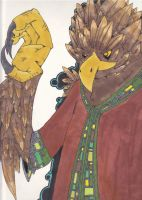 HawkMage APA by CarrotMonster