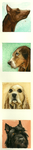 Watercolor Dogs by RiotsinRome