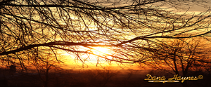 Facebook Cover | Northen Fall Sunset by DanaHaynes