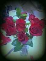 Roses (Edited Version 2) by sinisterinsomniac