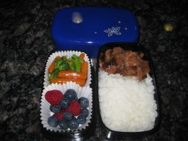 Teriyaki Beef Bento by Red-Delphi
