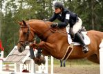 Horse Trials Stock 8 by HandHugsFTW