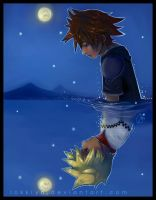 Sora, Roxas: Reflection by Lokklyn