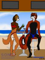 Roy and Ozy's Beach Bar Rendezvous by SonicHomeboy