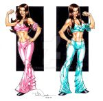 WWE Divas, the Bella Twins by ToddNauck