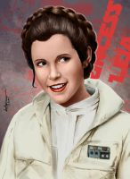 Princess LEIA by mistermat05