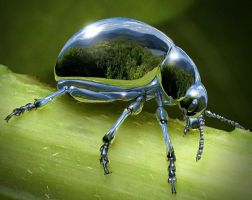 Chrome Beetle by AnthonyHearsey