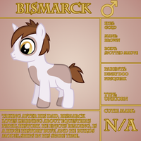 Bismarck Bio by LudiculousPegasus