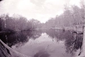 bw lake by loobyloukitty
