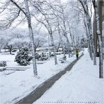 Snowy Winter by Val-Faustino