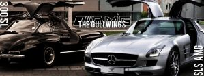 The Gullwings by Royalraptor