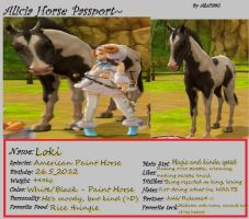 Horse Passport - Loki by Cool-Ally