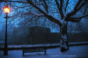 Winter by the Moat by EarthHart