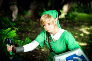 The Legend of Zelda - Skyward Sword Link by RoteMamba