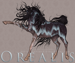Orealis -- CharacterRef [NEW DESIGN] by devils-horizon