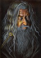 Gandalf the Grey by vigshane