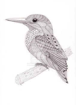 Tangled Kingfisher by scootergirl762