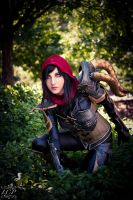 Diablo 3 - Demon Hunter 7 by LiquidCocaine-Photos