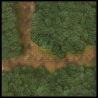Forest Roads: Road Fork [Grid] by YoSpeck