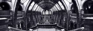 The Natural History Museum by duhcoolies