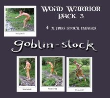 Woad Warrior Pack 3 by GoblinStock
