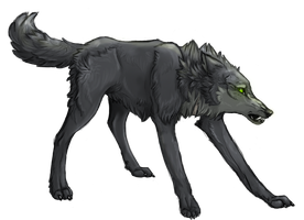 Wolf's Rain Collaboration: Tsume by Akadafeathers