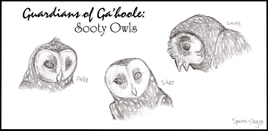 Sooty Owls of Ga'hoole by Spectra-Sky