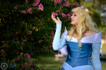 Garden Flower. Sleeping Beauty cosplay by Giuzzys