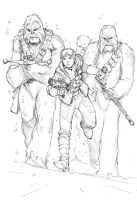 Leia and her wookie strikeforce by Max-Dunbar
