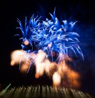 Fireworks in Paris 2014 by Telekinesy
