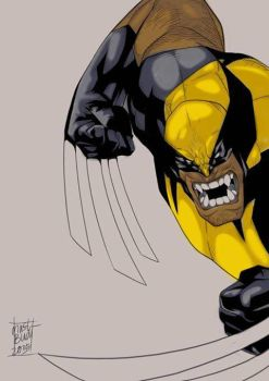 wolverine by aksanwhenk