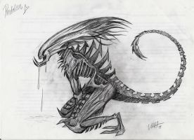 Xenomorph sketch by Milarcha