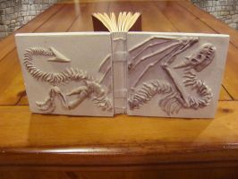 Dragon Fossil Book Full Spread ~SOLD by Swashbookler