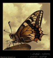 My Butterfly .. by al-nay
