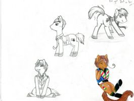 APH pony sketches by Tip-the-cat