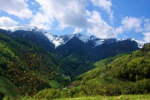 VALLEE DES PYRENEES by Capricorneg