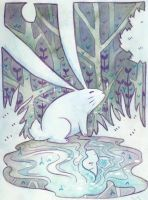 The bunny's reflection by scilk