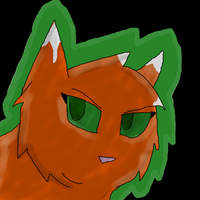 Squirrelflight by Willow0000
