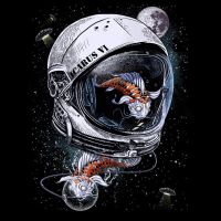 Space Koi by DrSpazmo by Design-By-Humans