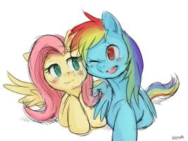 Fluttershy and Rainbowdash by Renacollie